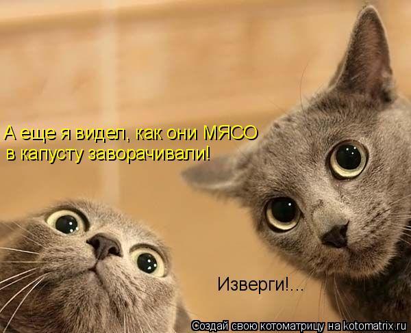 Котоматриця!)))) 867853