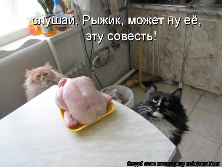 Котоматрица - -слушай, Рыжик, может ну её, эту совесть!