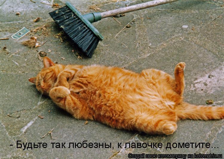 Котоматрица: - Будьте так любезны, к лавочке дометите...