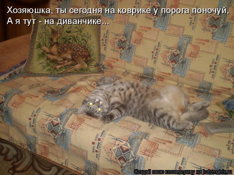 Котоматрица: Хозяюшка, ты сегодня на коврике у порога поночуй, А я тут - на диванчике...