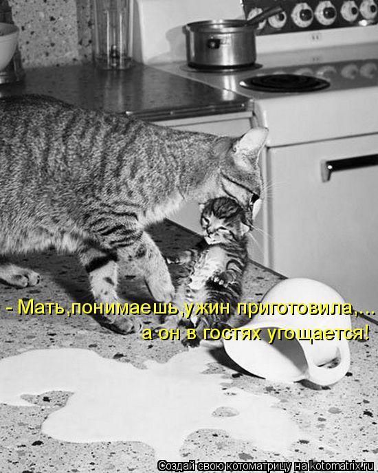 - Мать,понимаешь,ужин приготовила,... а он в гостях угощается!