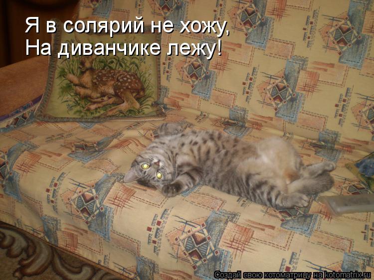 Котоматрица: Я в солярий не хожу, На диванчике лежу!