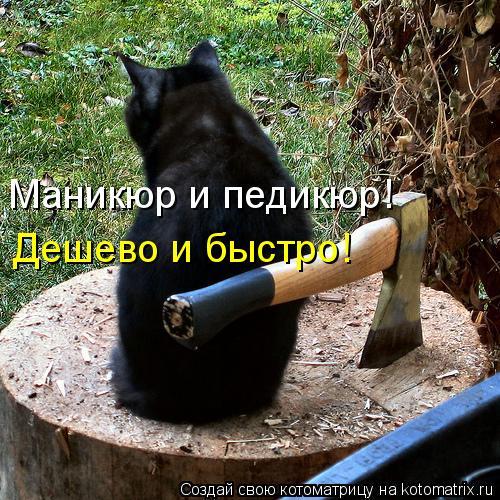 Котоматриця!)))) 869230