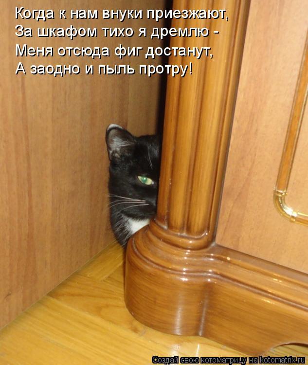 Когда к нам внуки приезжают, За шкафом тихо я дремлю -  Меня отсюда фи