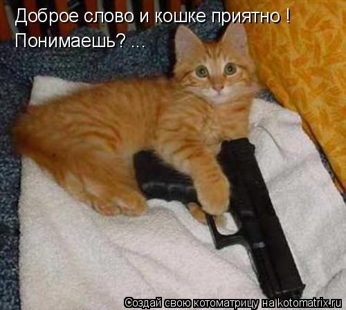 Котоматрица: Доброе слово и кошке приятно !  Понимаешь? ...