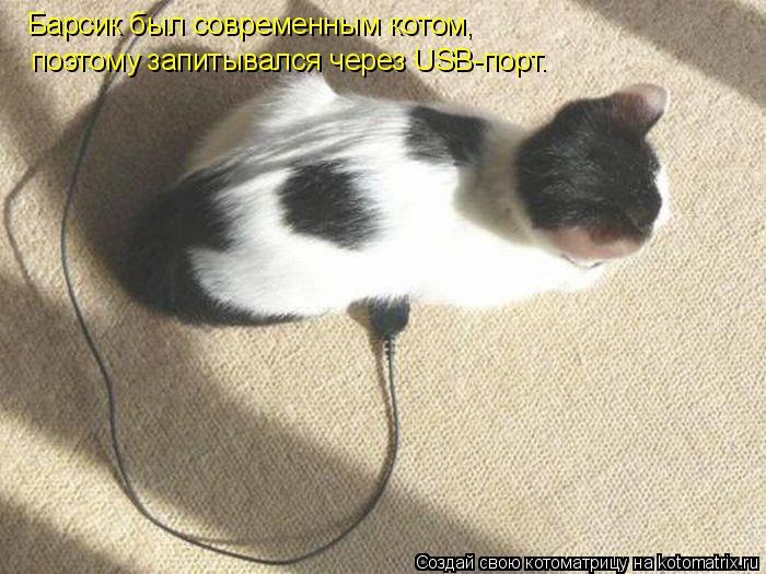 Котоматрица: Барсик был современным котом, поэтому запитывался через USB-порт.