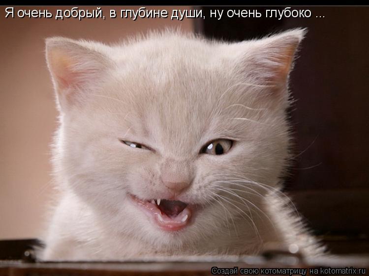 Котоматрица: Я очень добрый, в глубине души, ну очень глубоко ...