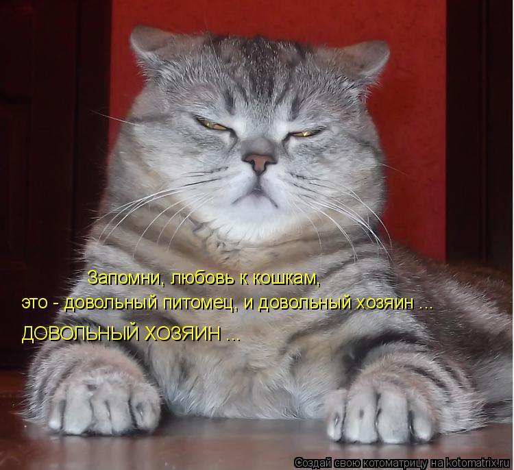 Котоматрица: Запомни, любовь к кошкам,  это - довольный питомец, и довольный хозяин ... ДОВОЛЬНЫЙ ХОЗЯИН ...