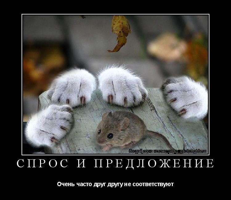 http://kotomatrix.ru/images/lolz/2011/03/31/6.jpg
