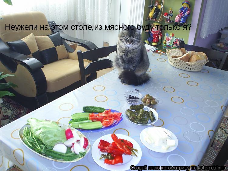 Котоматрица: Неужели на этом столе,из мясного буду только я?