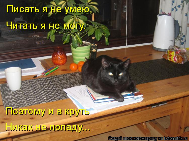 Котоматрица: Писать я не умею, Читать я не могу. Поэтому и в круть Никак не попаду...