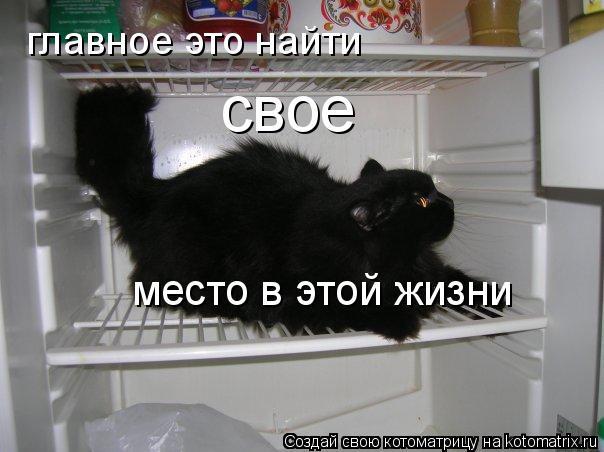 http://kotomatrix.ru/images/lolz/2011/04/01/871963.jpg