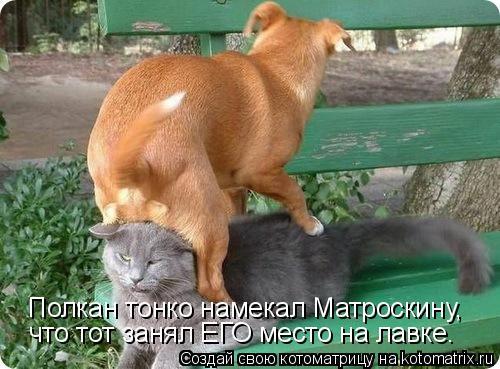 Котоматрица: Полкан тонко намекал Матроскину, что тот занял ЕГО место на лавке.