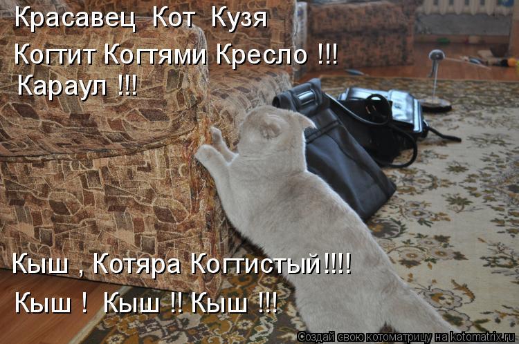 Котоматрица: Красавец  Кот  Кузя Когтит Когтями Кресло !!! Караул !!! Кыш , Котяра Когтистый!!!! Кыш !  Кыш !! Кыш !!!