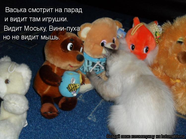 Котоматрица: Васька смотрит на парад  и видит там игрушки. Видит Моську, Вини-пуха но не видит мышь.