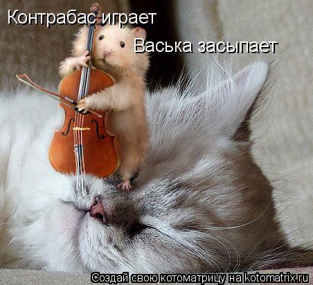 Котоматрица: Контрабас играет Васька засыпает