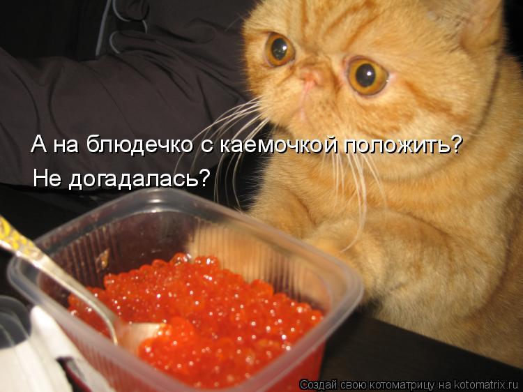 А на блюдечко с каемочкой положить? Не догадалась?