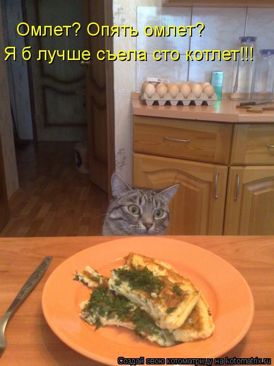 Котоматрица: Омлет? Опять омлет? Я б лучше съела сто котлет!!!