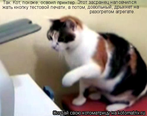 Котоматрица: Так. Кот, похоже, освоил принтер.  Этот засранец наловчился  жать кнопку тестовой печати, а потом, довольный, дрыхнет на  разогретом агрегате.