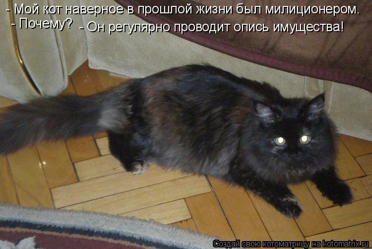 Котоматрица: - Мой кот наверное в прошлой жизни был милиционером. - Почему? - Он регулярно проводит опись имущества!