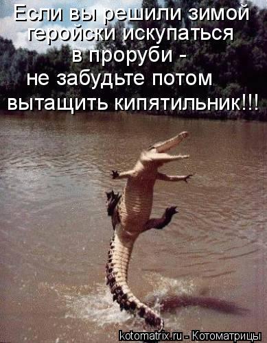 Котоматрица: Если вы решили зимой геройски искупаться  в проруби - не забудьте потом вытащить кипятильник!!!