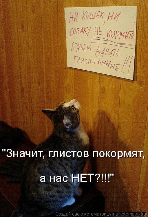 Котоматриця!)))) - Страница 3 875833
