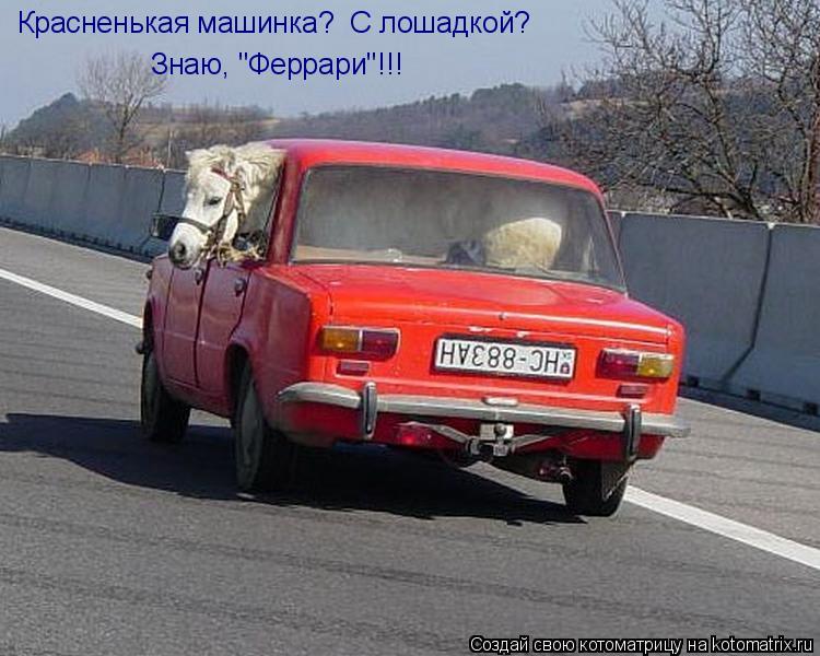 """Котоматрица: Красненькая машинка?  С лошадкой?  Знаю, """"Феррари""""!!!"""