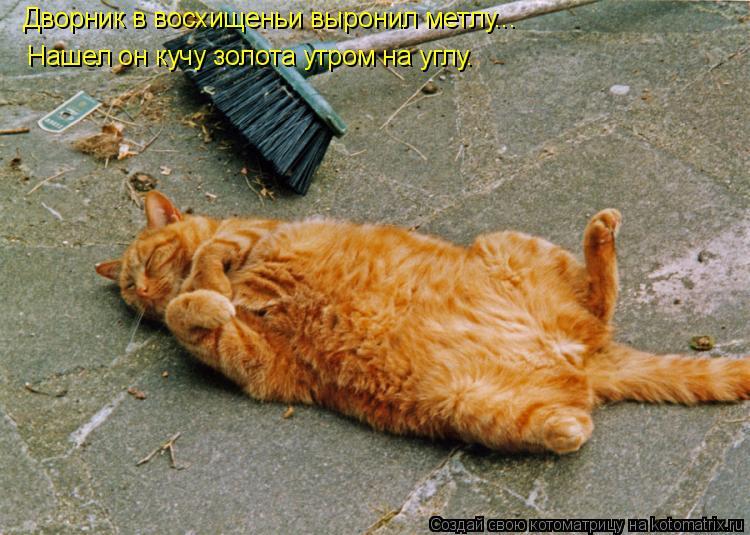 Котоматрица: Дворник в восхищеньи выронил метлу... Нашел он кучу золота утром на углу.