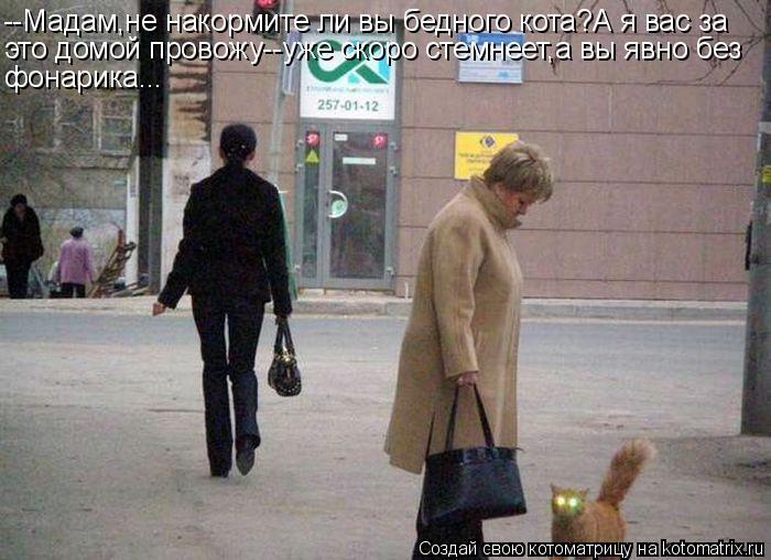 Котоматрица: --Мадам,не накормите ли вы бедного кота?А я вас за это домой провожу--уже скоро стемнеет,а вы явно без фонарика...