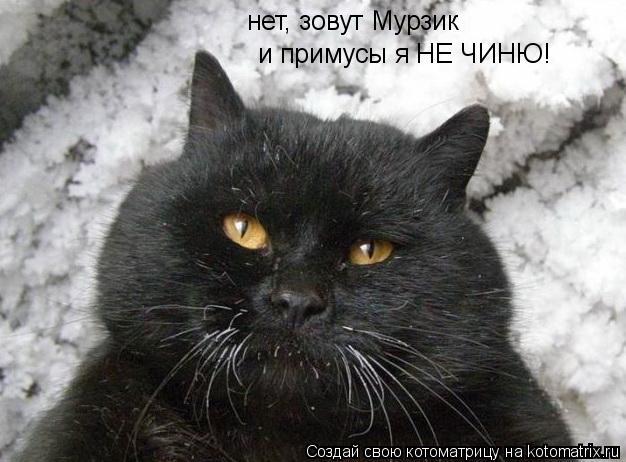 Котоматрица: нет, зовут Мурзик  и примусы я НЕ ЧИНЮ!