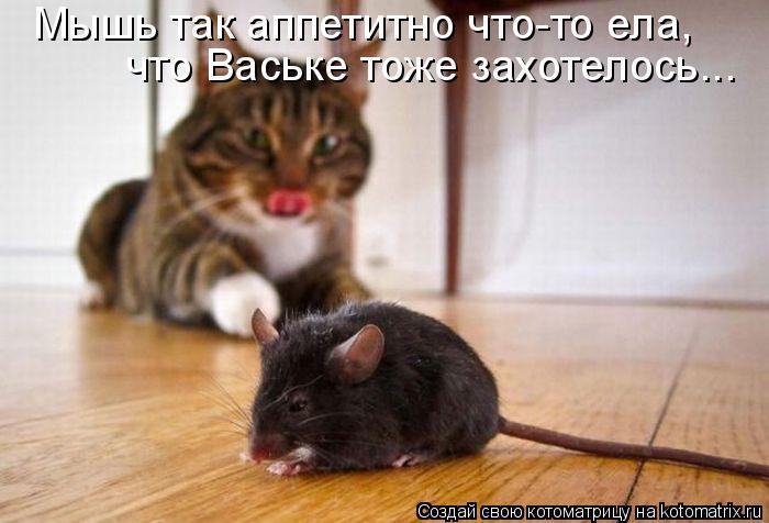 Мышь так аппетитно что-то ела, что Ваське тоже захотелось...