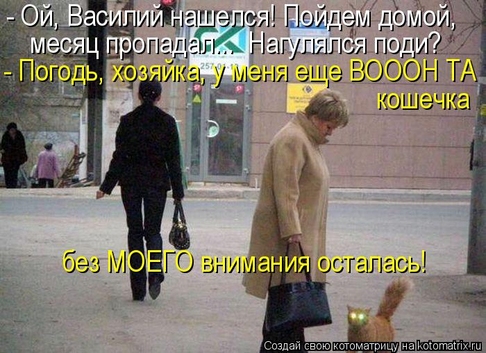 Котоматрица: - Ой, Василий нашелся! Пойдем домой, - Погодь, хозяйка, у меня еще ВОООН ТА  месяц пропадал...  Нагулялся поди? кошечка  без МОЕГО внимания остал