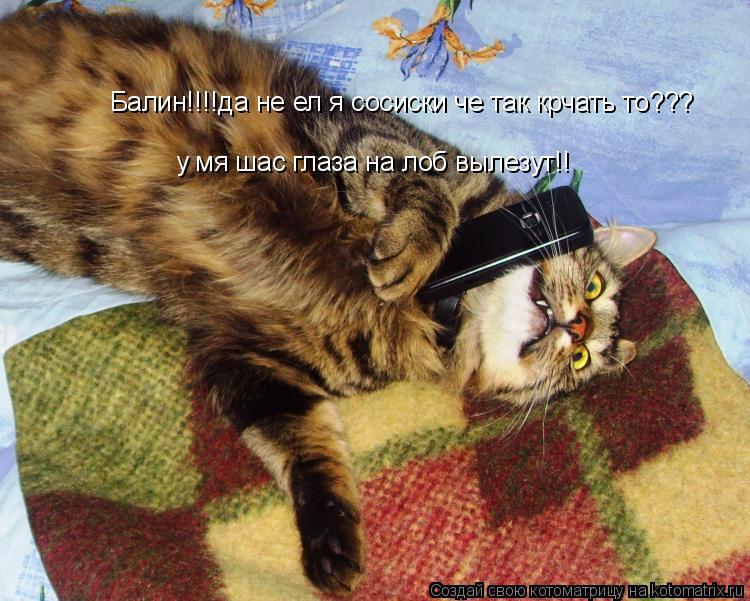 Котоматрица: Балин!!!!да не ел я сосиски че так крчать то??? Балин!!!!да не ел я сосиски че так крчать то??? у мя шас глаза на лоб вылезут!! у мя шас глаза на лоб