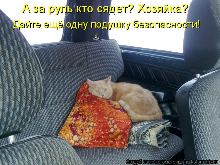 Котоматрица: А за руль кто сядет? Хозяйка? Дайте ещё одну подушку безопасности!