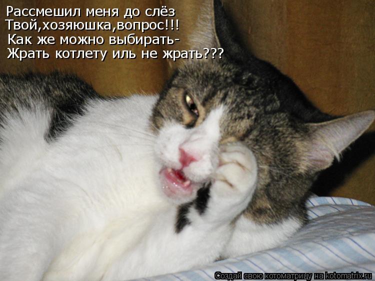 Рассмешил меня до слёз Твой,хозяюшка,вопрос!!! Как же можно выбирать- Жрать котлету иль не жрать???