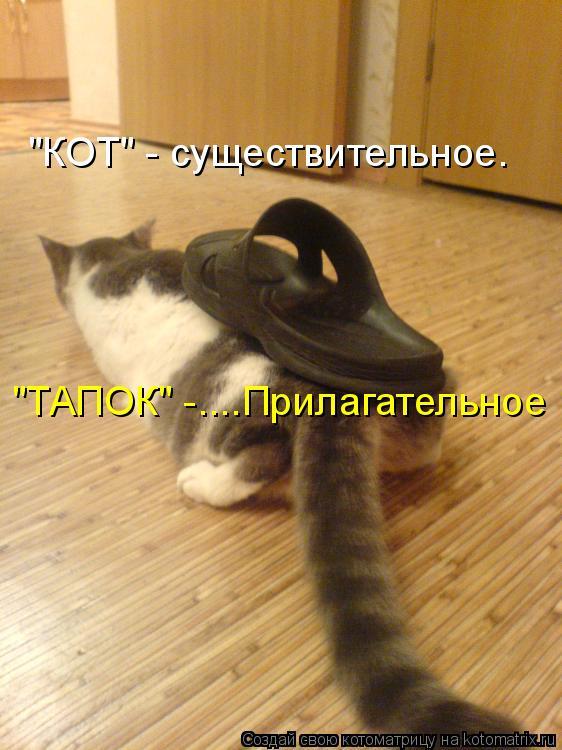 http://kotomatrix.ru/images/lolz/2011/04/07/877797.jpg