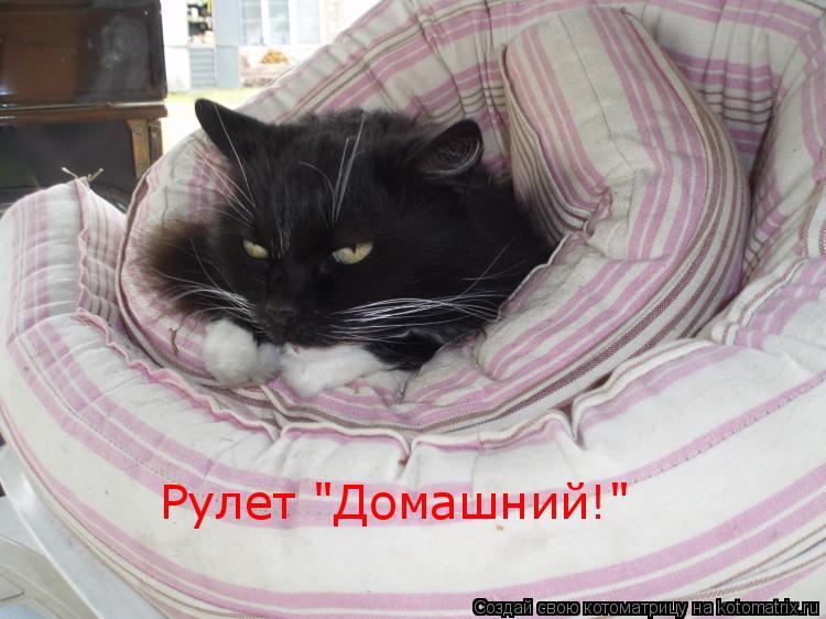 "Котоматрица: Рулет ""Домашний!"""
