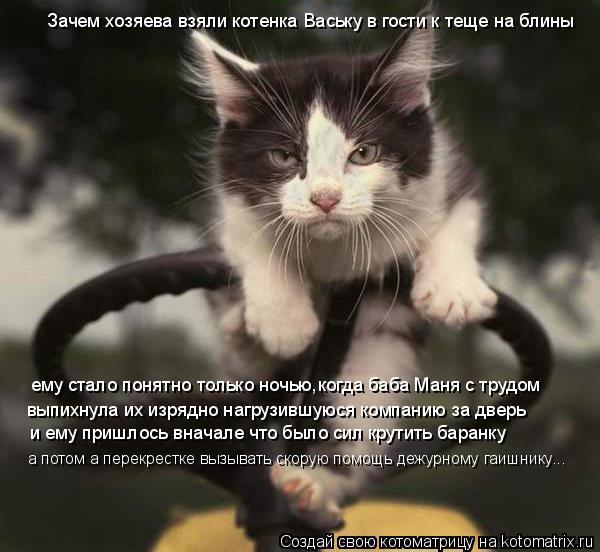 Котоматрица: Зачем хозяева взяли котенка Ваську в гости к теще на блины ему стало понятно только ночью,когда баба Маня с трудом выпихнула их изрядно наг