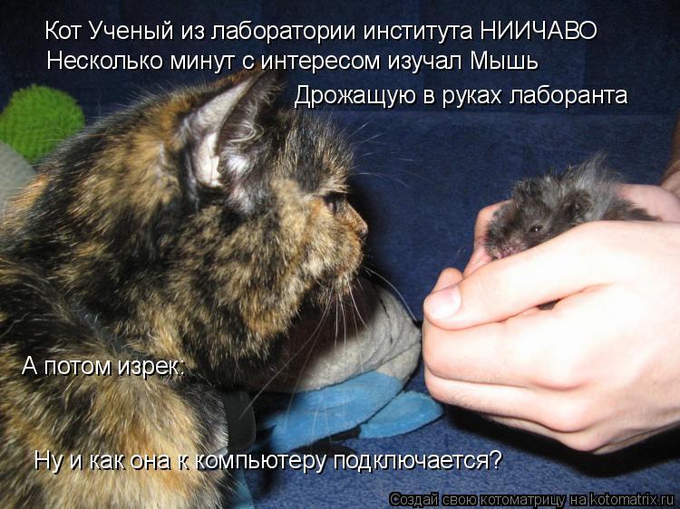 Котоматрица: Кот Ученый из лаборатории института НИИЧАВО Несколько минут с интересом изучал Мышь Дрожащую в руках лаборанта А потом изрек: Ну и как она