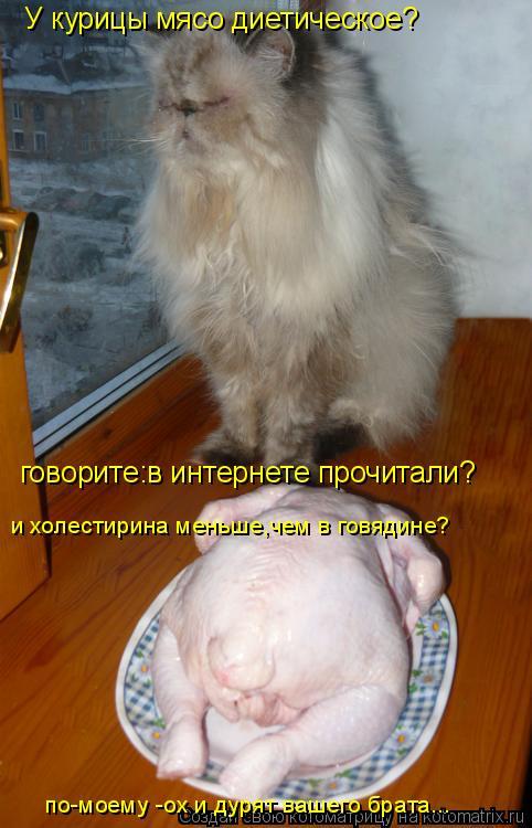 Котоматрица: У курицы мясо диетическое? говорите:в интернете прочитали? и холестирина меньше,чем в говядине? по-моему -ох и дурят вашего брата...