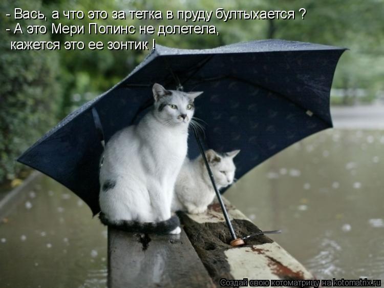 Котоматрица: - Вась, а что это за тетка в пруду бултыхается ? - А это Мери Попинс не долетела,  кажется это ее зонтик !