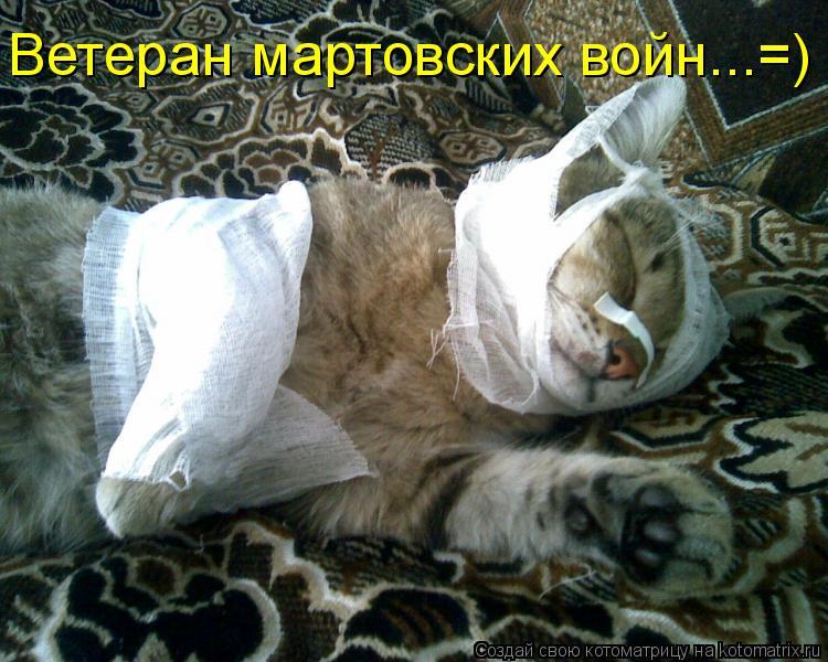 Котоматрица: Ветеран мартовских войн...=)