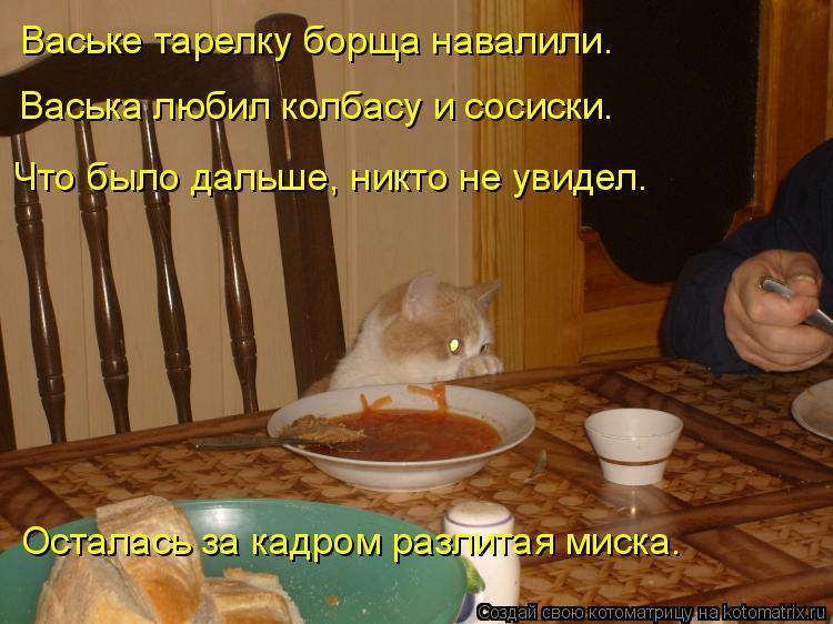 Котоматрица: Ваське тарелку борща навалили. Васька любил колбасу и сосиски. Что было дальше, никто не увидел. Осталась за кадром разлитая миска.
