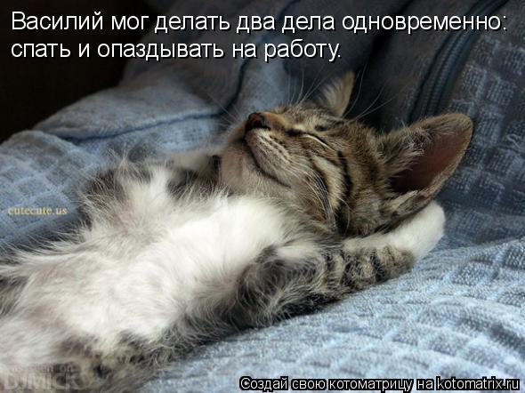 Котоматрица: Василий мог делать два дела одновременно: спать и опаздывать на работу.