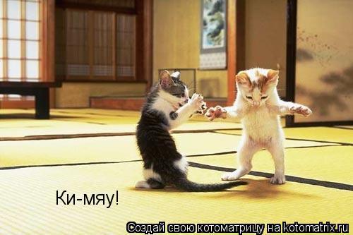 Котоматрица: Ки-мяу!