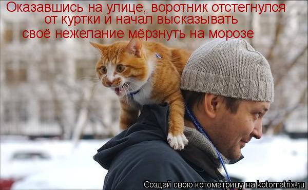 Котоматриця!)))) 880452