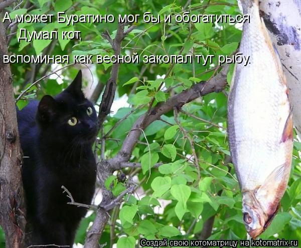 Котоматрица: А может Буратино мог бы и обогатиться Думал кот,  вспоминая как весной закопал тут рыбу.