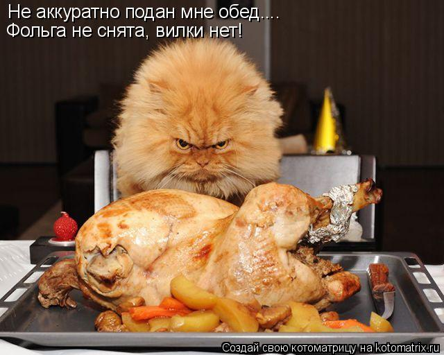 Котоматрица: Не аккуратно подан мне обед.... Фольга не снята, вилки нет!