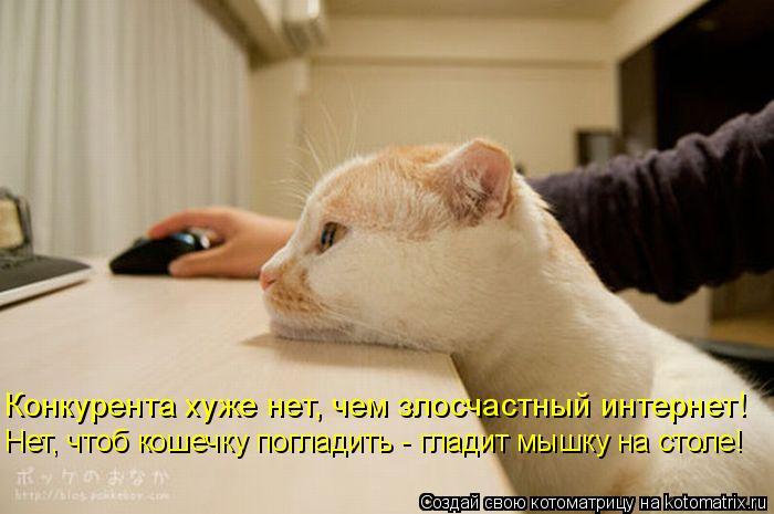 Котоматрица - Нет, чтоб кошечку погладить - гладит мышку на столе! Конкурента хуже н