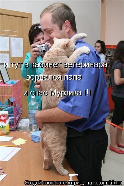 Котоматрица: и спас Мурзика !!! и тут в кабинет ветеринара  ворвался папа